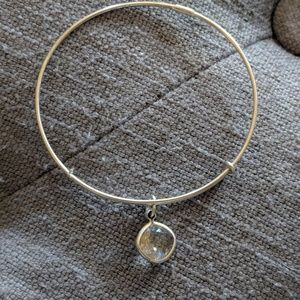 Alex and Ani Energy Bangle